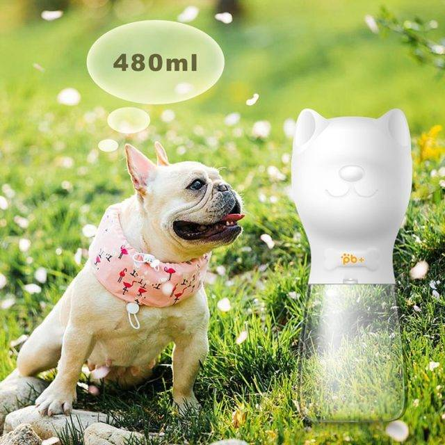 Dog Feeding Water Bottles for Outdoor Use
