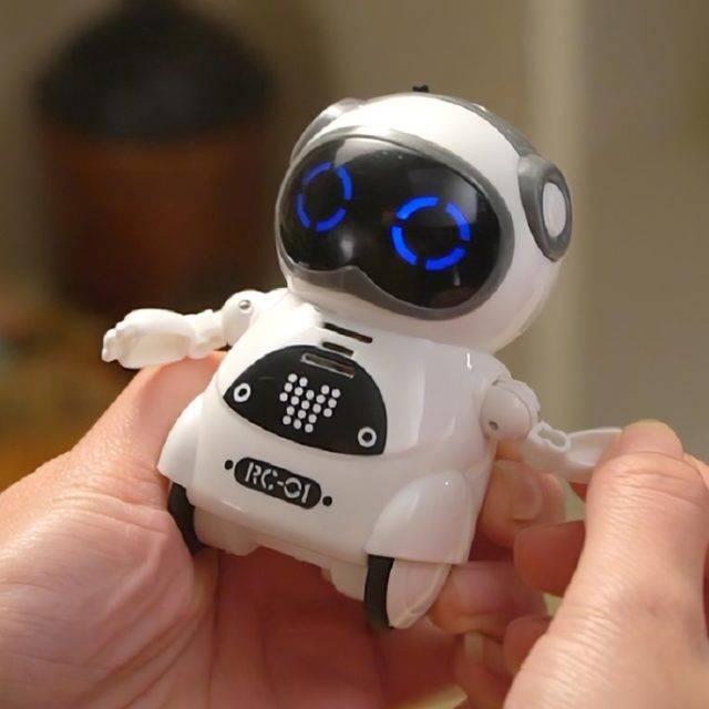 Kid's Talking Pocket RC Robot