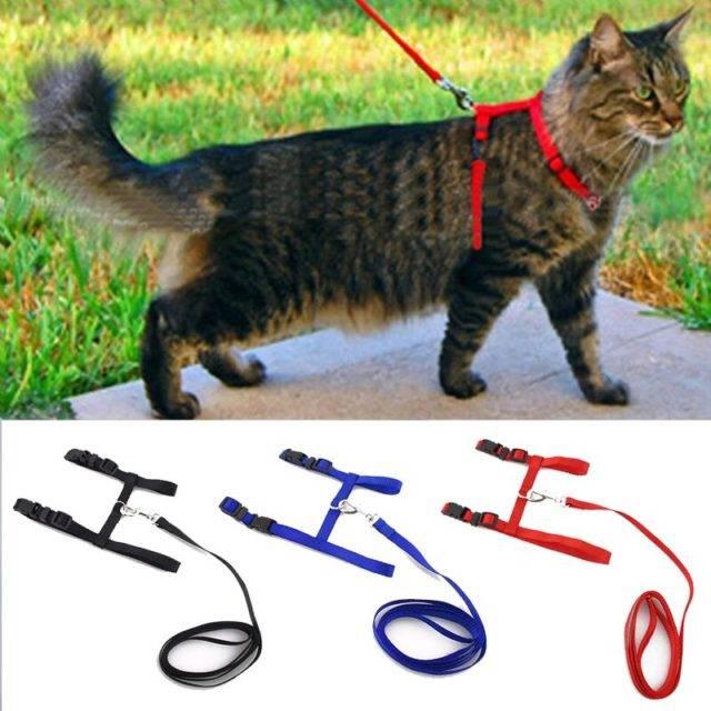 Adjustable Cat Walking Harness