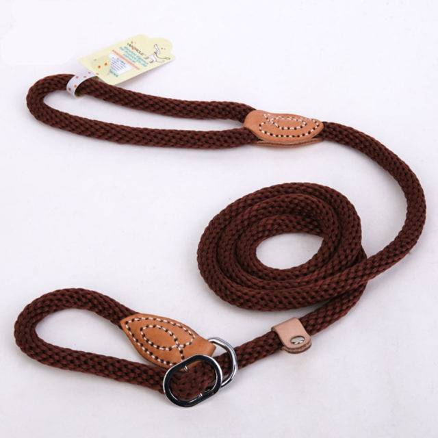 Dog Leash For Training And Running