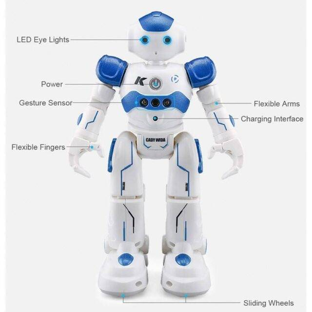 Singing and Dancing RC Robot Toy